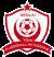 TSM Fussballakademie 2013 e.V. Logo